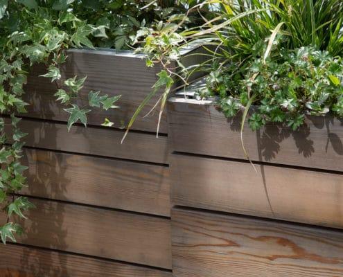 projet-elle-mint-gardens-amenagement-jardin-geneve