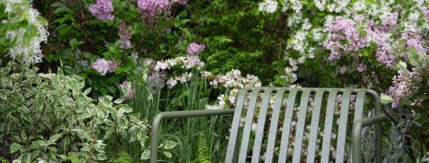 projet-maïdo-mint-gardens-architecte-paysagiste